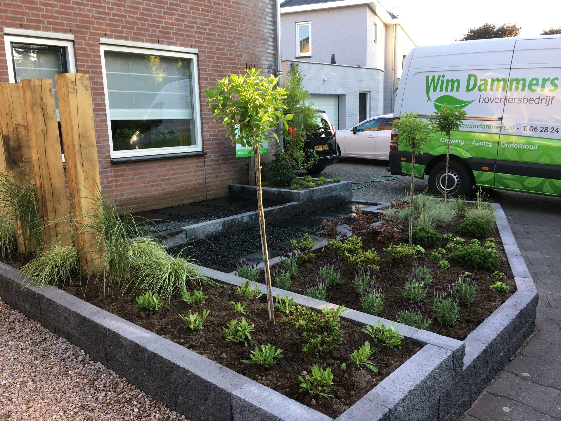 Aanleg voortuin overloon wim dammers hoveniersbedrijf for Aanleg kleine tuin